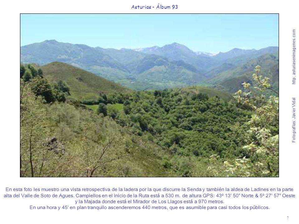 7 Asturias - Álbum 93 Fotografías: Javier Vidal http: asturiasenimagenes.com En esta foto les muestro una vista retrospectiva de la ladera por la que discurre la Senda y también la aldea de Ladines en la parte alta del Valle de Soto de Agues.
