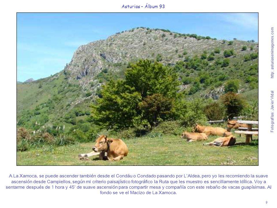 9 Asturias - Álbum 93 Fotografías: Javier Vidal http: asturiasenimagenes.com A La Xamoca, se puede ascender también desde el Condáu o Condado pasando