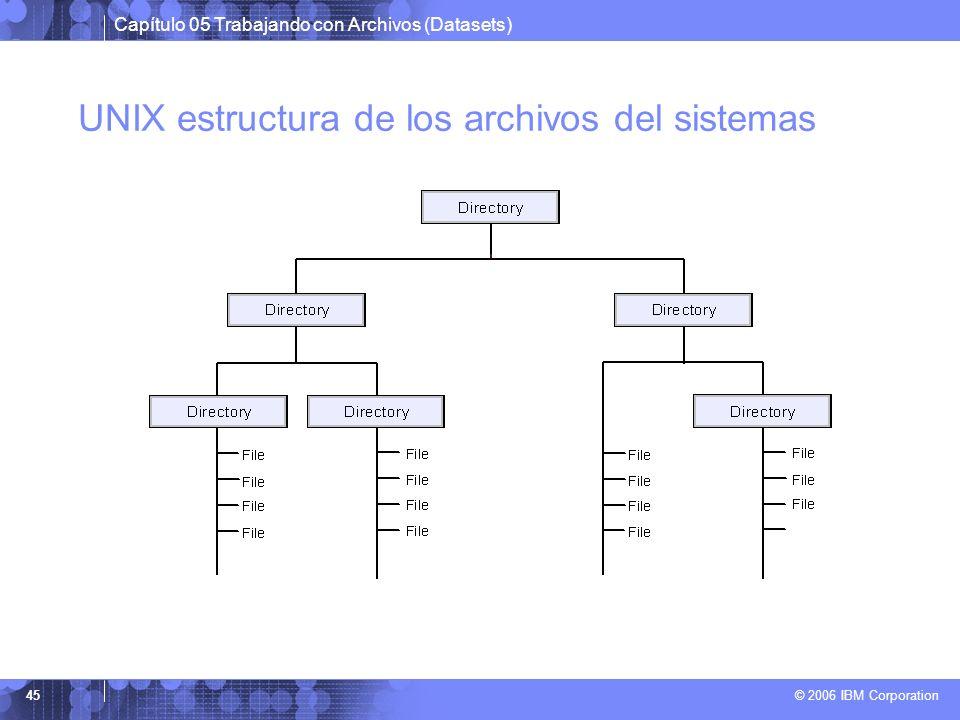 Capítulo 05 Trabajando con Archivos (Datasets) © 2006 IBM Corporation 45 UNIX estructura de los archivos del sistemas