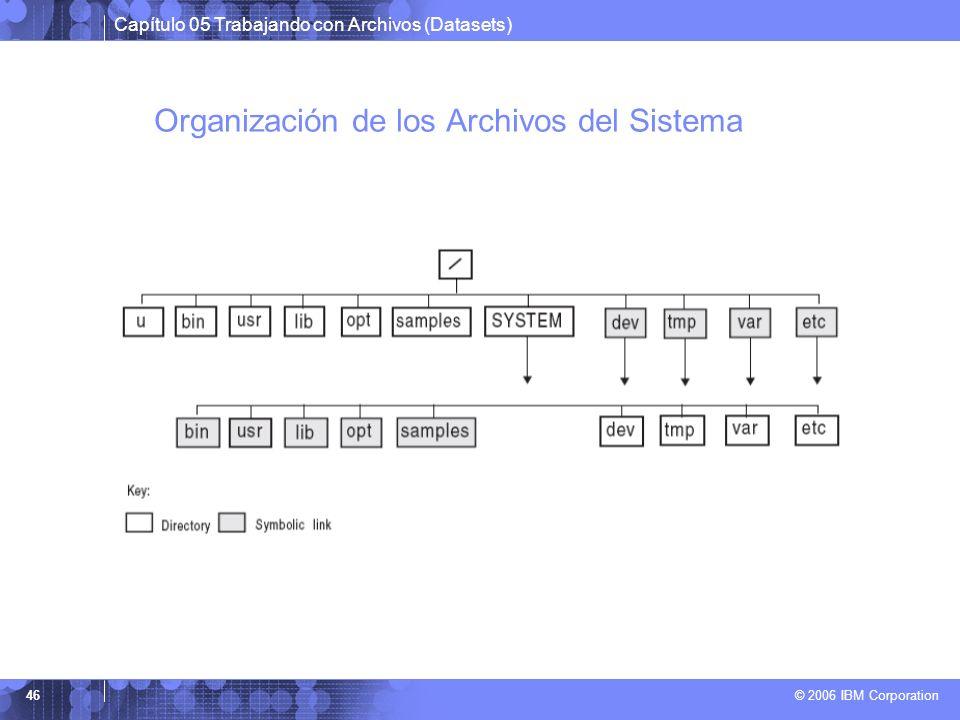 Capítulo 05 Trabajando con Archivos (Datasets) © 2006 IBM Corporation 46 Organización de los Archivos del Sistema