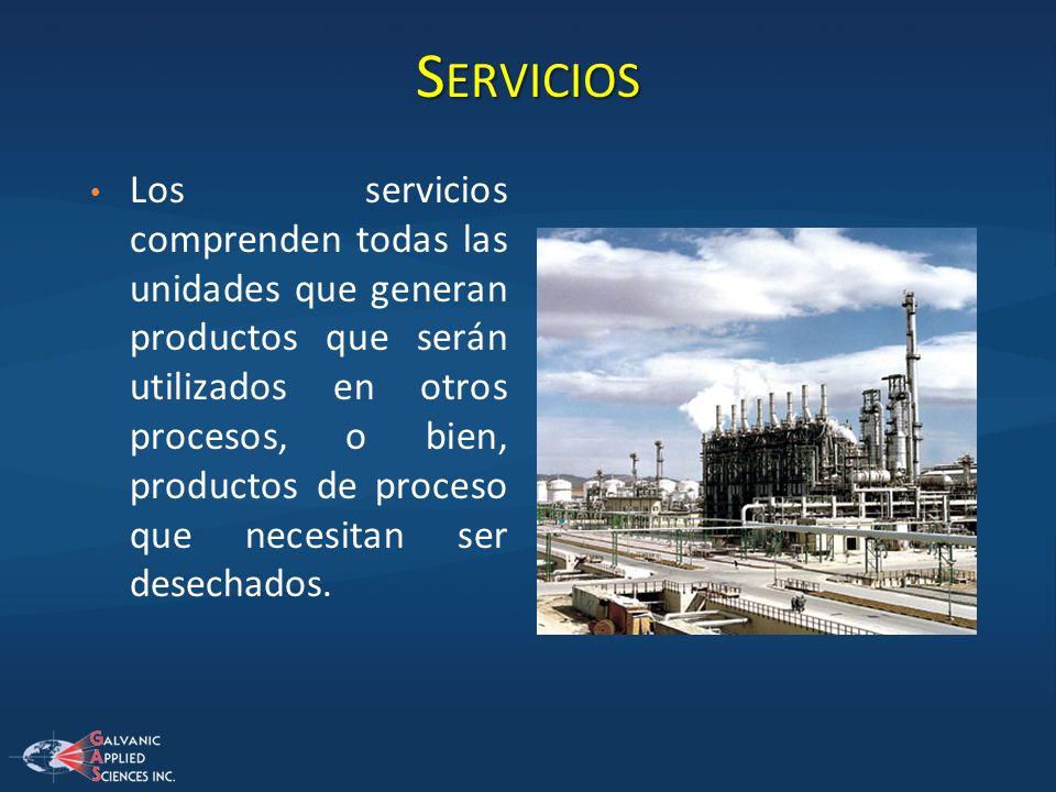 S ERVICIOS Los servicios comprenden todas las unidades que generan productos que serán utilizados en otros procesos, o bien, productos de proceso que