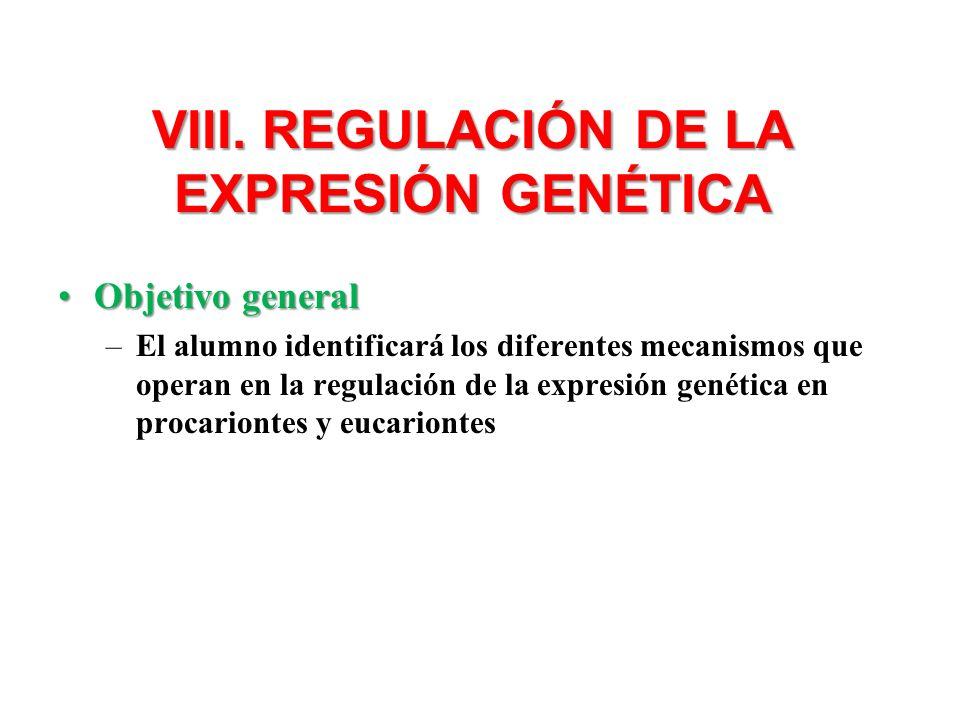 VIII. REGULACIÓN DE LA EXPRESIÓN GENÉTICA Objetivo generalObjetivo general –El alumno identificará los diferentes mecanismos que operan en la regulaci