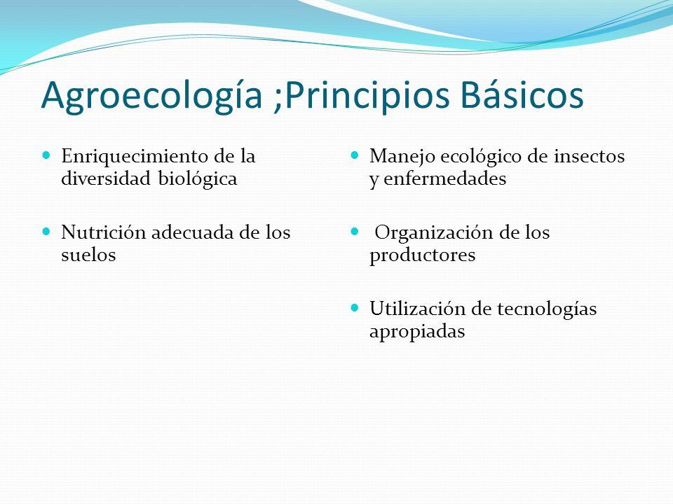 Agroecología ;Principios Básicos Enriquecimiento de la diversidad biológica Nutrición adecuada de los suelos Manejo ecológico de insectos y enfermedad