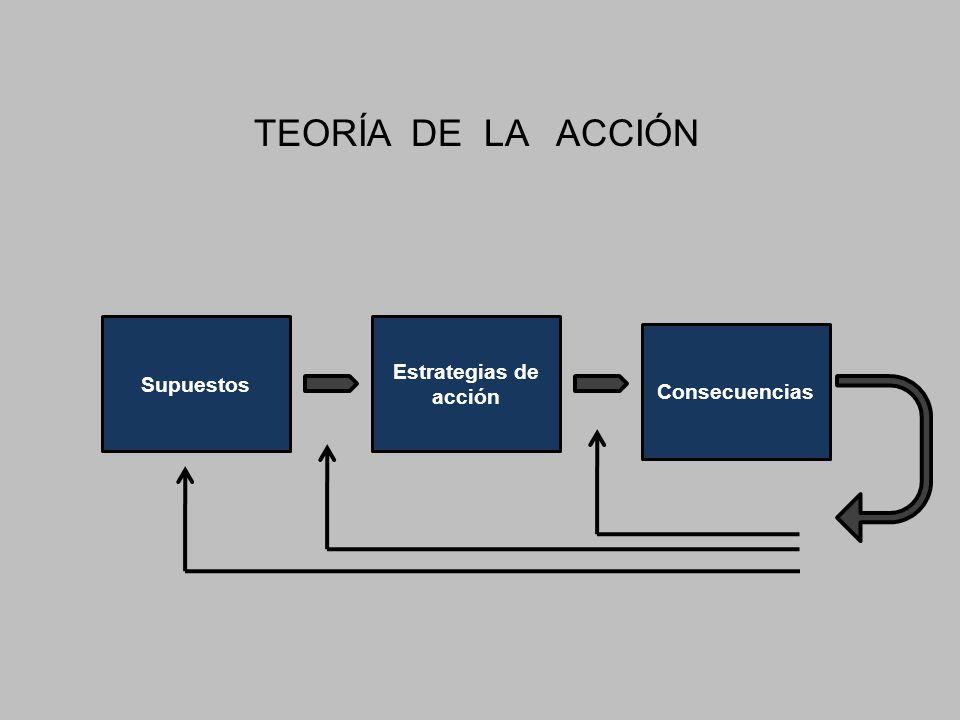 TEORÍA DE LA ACCIÓN Supuestos Estrategias de acción Consecuencias