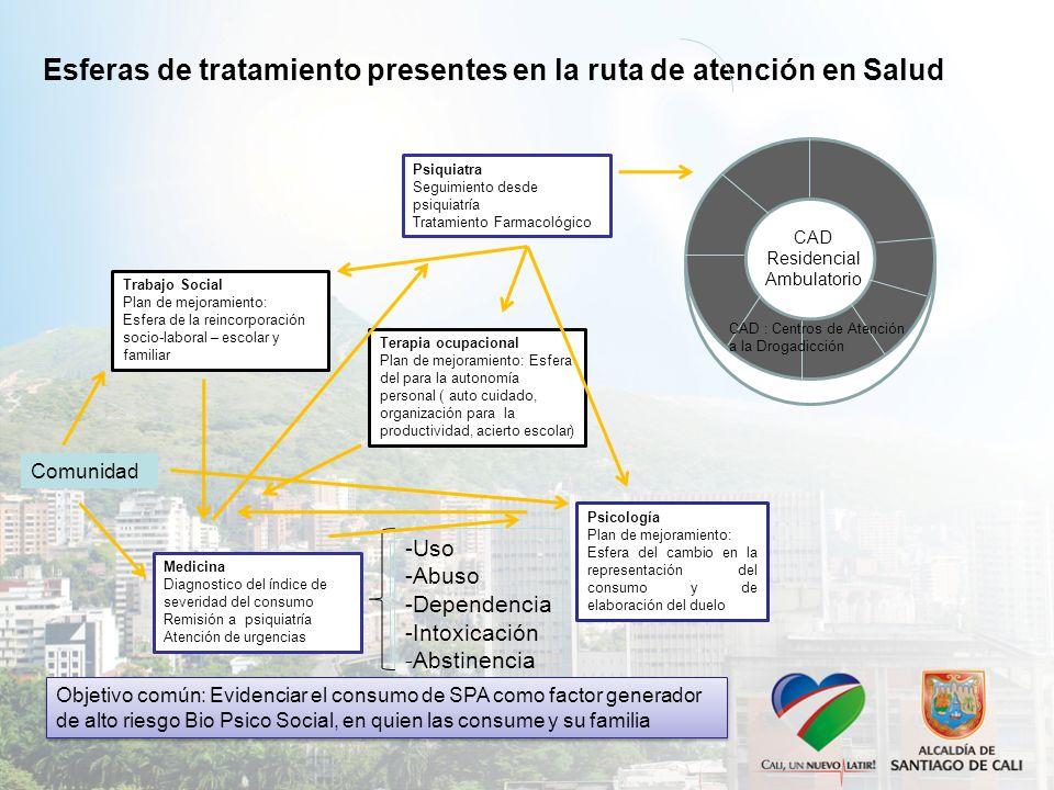Terapia ocupacional Plan de mejoramiento: Esfera del para la autonomía personal ( auto cuidado, organización para la productividad, acierto escolar) C