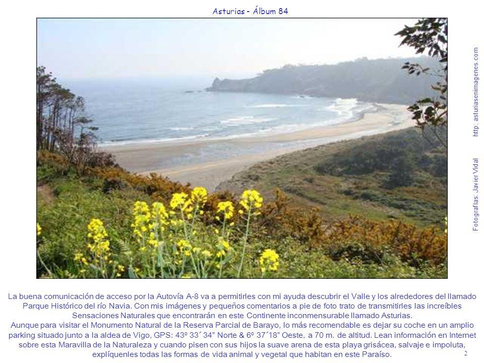 2 Asturias - Álbum 84 Fotografías: Javier Vidal http: asturiasenimagenes.com La buena comunicación de acceso por la Autovía A-8 va a permitirles con mi ayuda descubrir el Valle y los alrededores del llamado Parque Histórico del río Navia.
