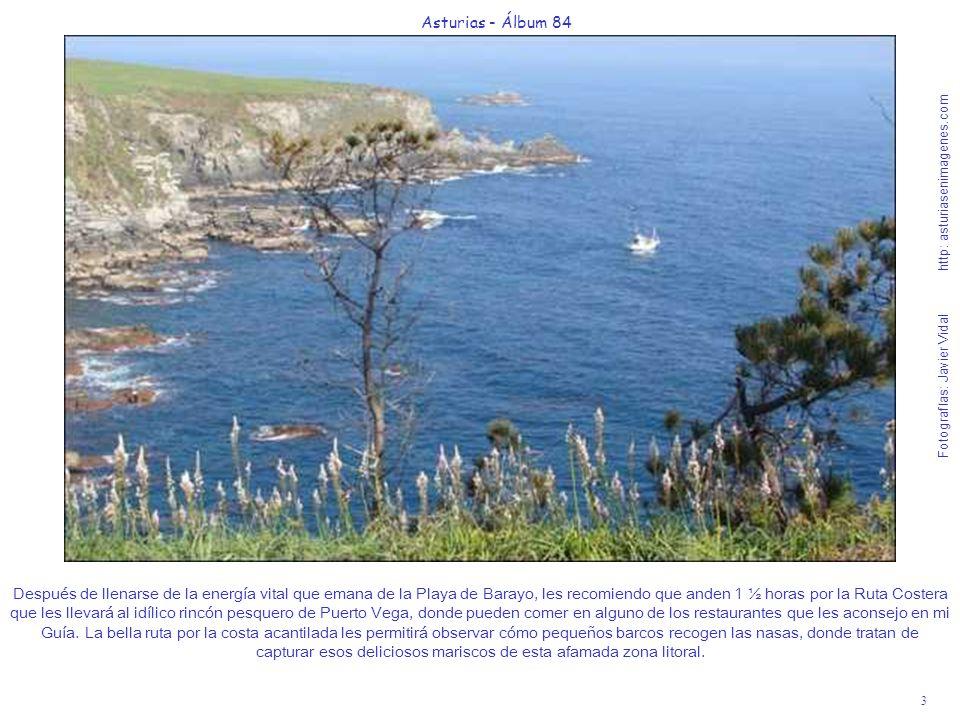 4 Asturias - Álbum 84 Fotografías: Javier Vidal http: asturiasenimagenes.com Puerto Vega es un enclave singular guapísimo con buen desarrollo turístico, hostelero y pesquero-marisquero.