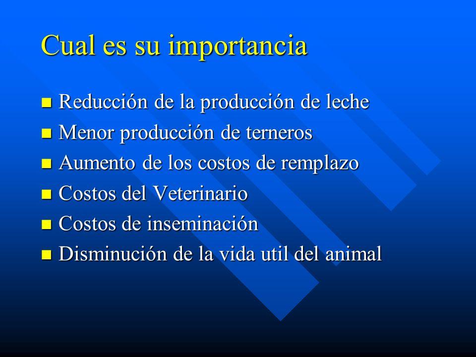 Cual es su importancia Reducción de la producción de leche Reducción de la producción de leche Menor producción de terneros Menor producción de terner
