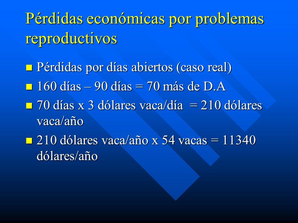 Pérdidas económicas por problemas reproductivos Pérdidas por días abiertos (caso real) Pérdidas por días abiertos (caso real) 160 días – 90 días = 70