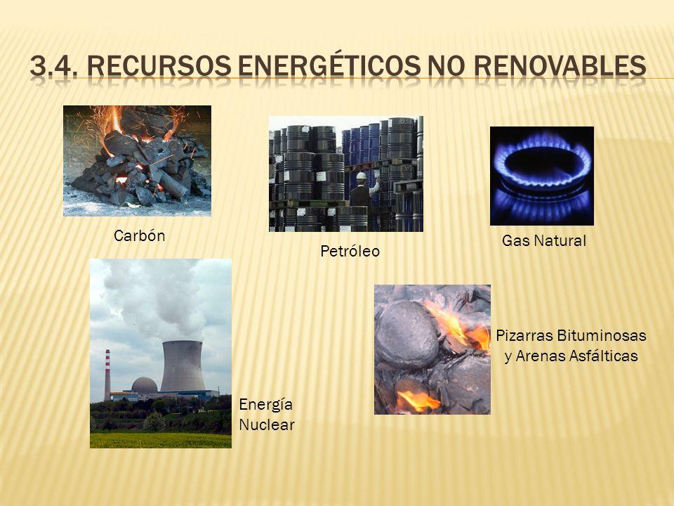 Carbón Energía Nuclear Gas Natural Pizarras Bituminosas y Arenas Asfálticas Petróleo