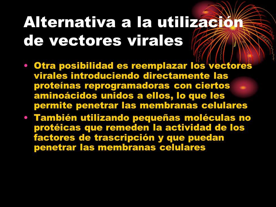 Alternativa a la utilización de vectores virales Otra posibilidad es reemplazar los vectores virales introduciendo directamente las proteínas reprogra