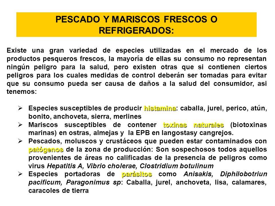 PESCADO Y MARISCOS FRESCOS O REFRIGERADOS: Existe una gran variedad de especies utilizadas en el mercado de los productos pesqueros frescos, la mayorí