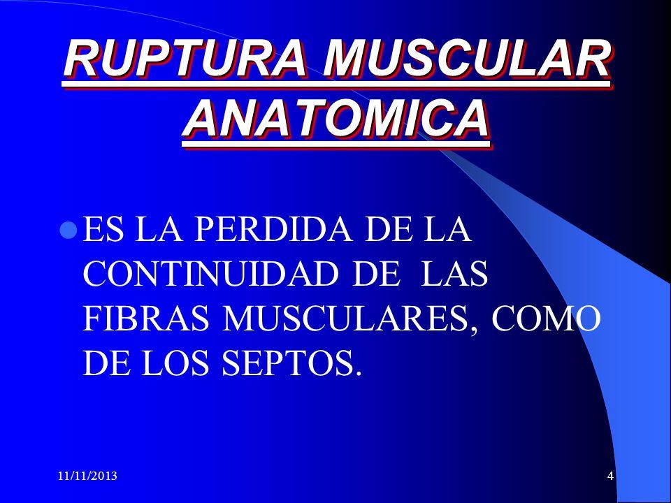 11/11/20134 RUPTURA MUSCULAR ANATOMICA ES LA PERDIDA DE LA CONTINUIDAD DE LAS FIBRAS MUSCULARES, COMO DE LOS SEPTOS.