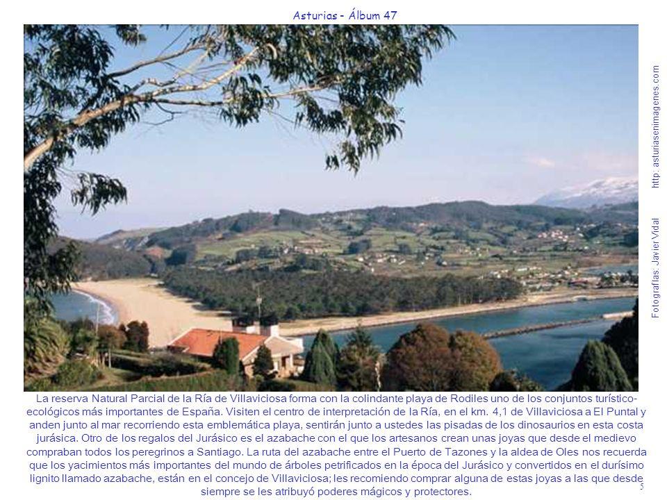 5 Asturias - Álbum 47 Fotografías: Javier Vidal http: asturiasenimagenes.com La reserva Natural Parcial de la Ría de Villaviciosa forma con la colinda