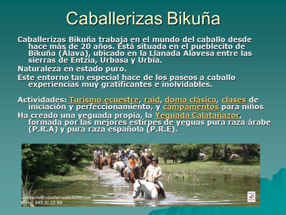 Caballerizas Bikuña Caballerizas Bikuña trabaja en el mundo del caballo desde hace más de 20 años. Está situada en el pueblecito de Bikuña (Álava), ub