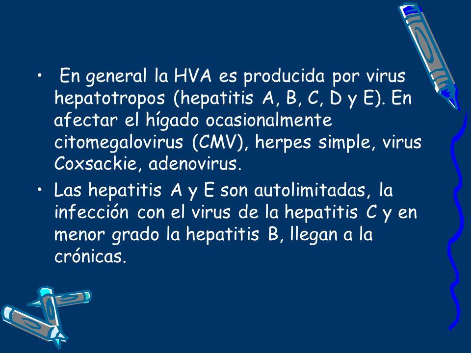 En general la HVA es producida por virus hepatotropos (hepatitis A, B, C, D y E). En afectar el hígado ocasionalmente citomegalovirus (CMV), herpes si