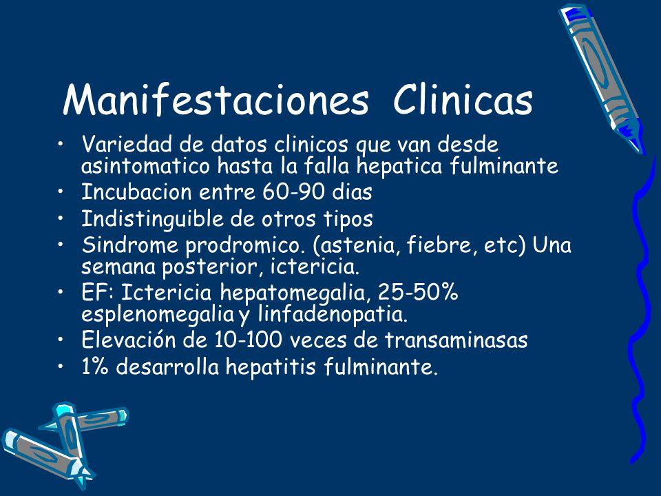 Manifestaciones Clinicas Variedad de datos clinicos que van desde asintomatico hasta la falla hepatica fulminante Incubacion entre 60-90 dias Indistin