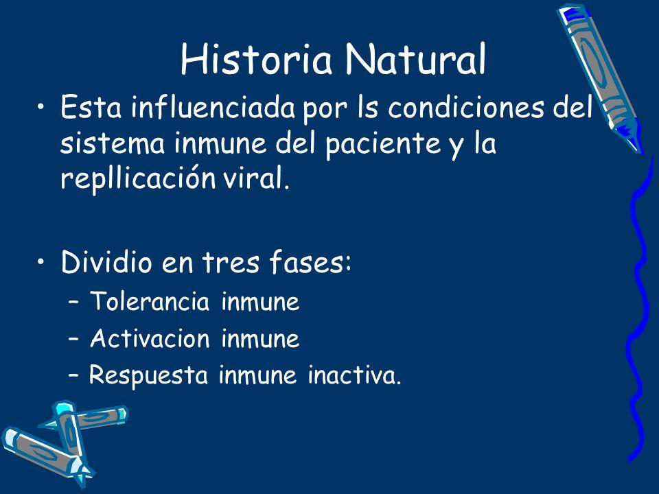 Historia Natural Esta influenciada por ls condiciones del sistema inmune del paciente y la repllicación viral. Dividio en tres fases: –Tolerancia inmu