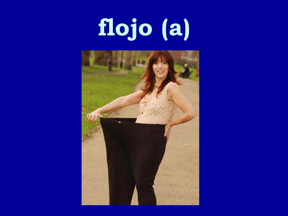 flojo (a)