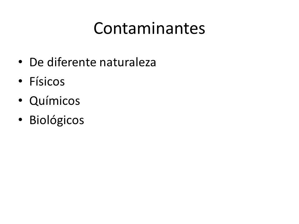 Contaminantes quimicos-efectos en la salud N hexano Plomo Mercurio Organofosforados encefalopatias