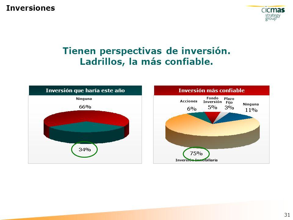 31 Inversiones Inversión que haría este año Ninguna Tienen perspectivas de inversión.