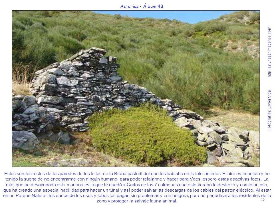 10 Asturias - Álbum 48 Fotografías: Javier Vidal http: asturiasenimagenes.com Estos son los restos de las paredes de los teitos de la Braña pastoril d