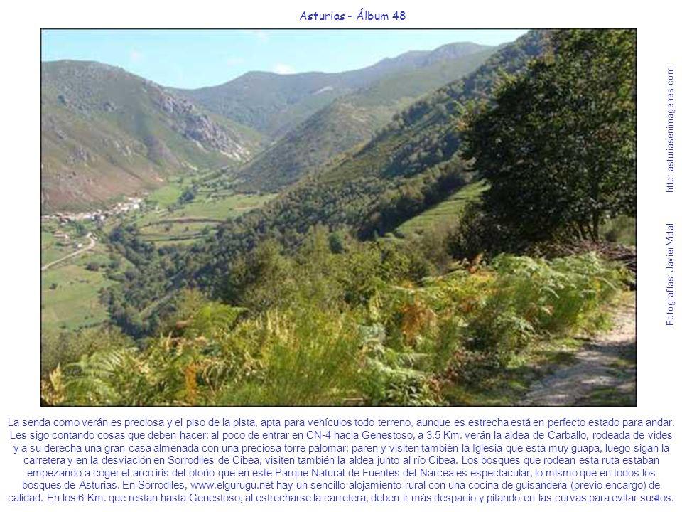 4 Asturias - Álbum 48 Fotografías: Javier Vidal http: asturiasenimagenes.com La senda como verán es preciosa y el piso de la pista, apta para vehículo