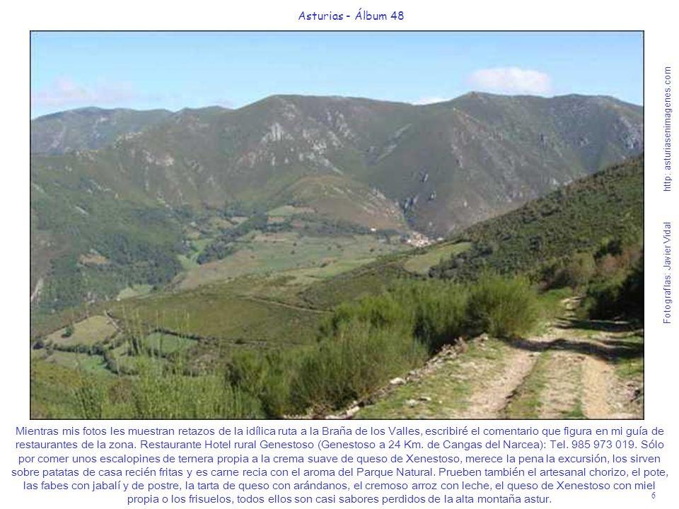 7 Asturias - Álbum 48 Fotografías: Javier Vidal http: asturiasenimagenes.com Las fotos de la ruta hablan por sí solas pero yo les debo aconsejar sobre los vinos y licores que deben acompañar sus comidas.