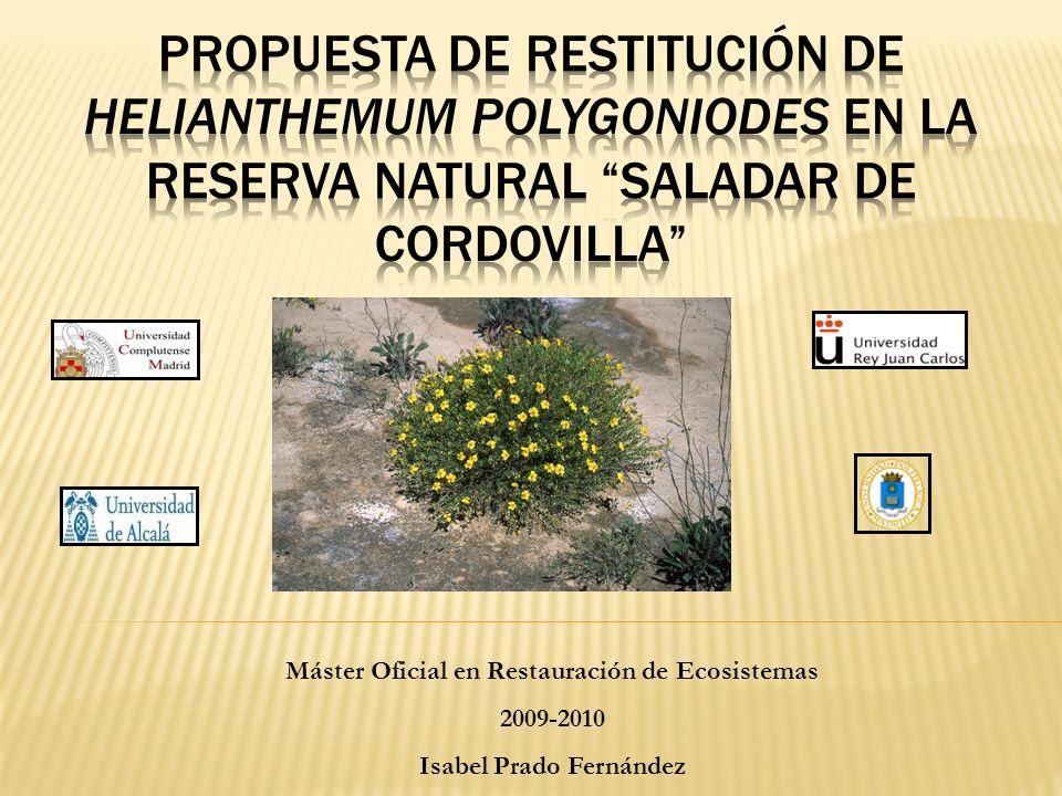 Máster Oficial en Restauración de Ecosistemas 2009-2010 Isabel Prado Fernández
