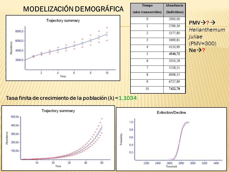 Tasa finita de crecimiento de la población (λ) =1,1034 MODELIZACIÓN DEMOGRÁFICA PMV ? Helianthemum juliae (PMV=300) Ne ?