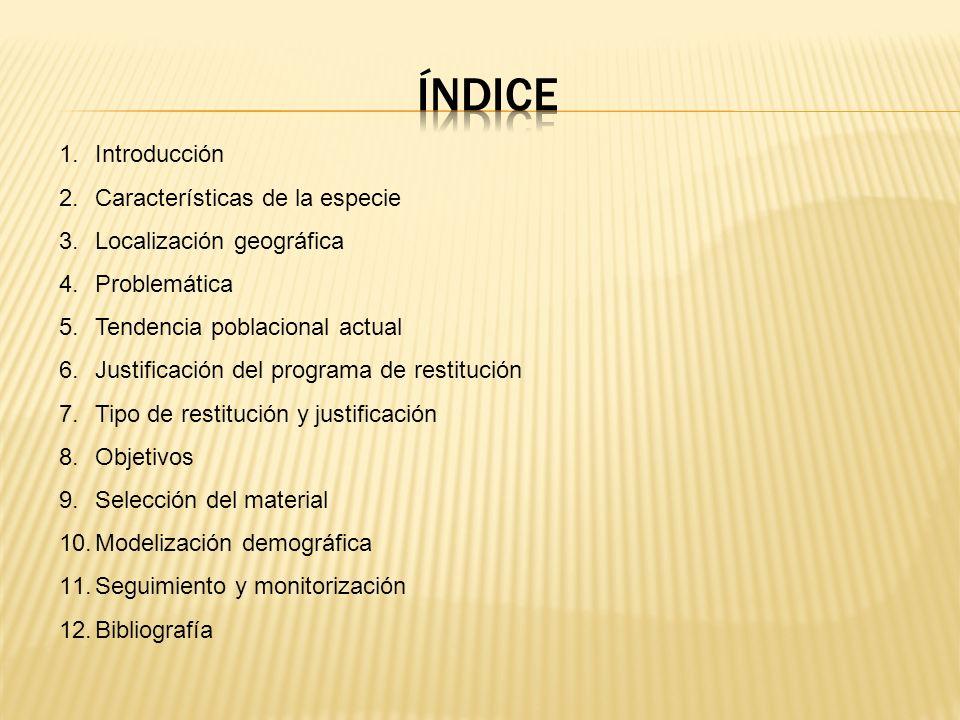 1.Introducción 2.Características de la especie 3.Localización geográfica 4.Problemática 5.Tendencia poblacional actual 6.Justificación del programa de