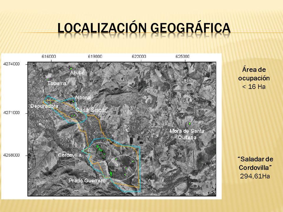 Área de ocupación < 16 Ha Saladar de Cordovilla 294,61Ha