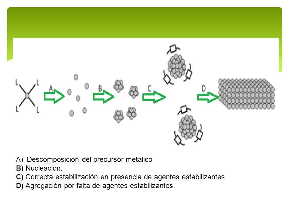 A)Descomposición del precursor metálico B) Nucleación. C) Correcta estabilización en presencia de agentes estabilizantes. D) Agregación por falta de a
