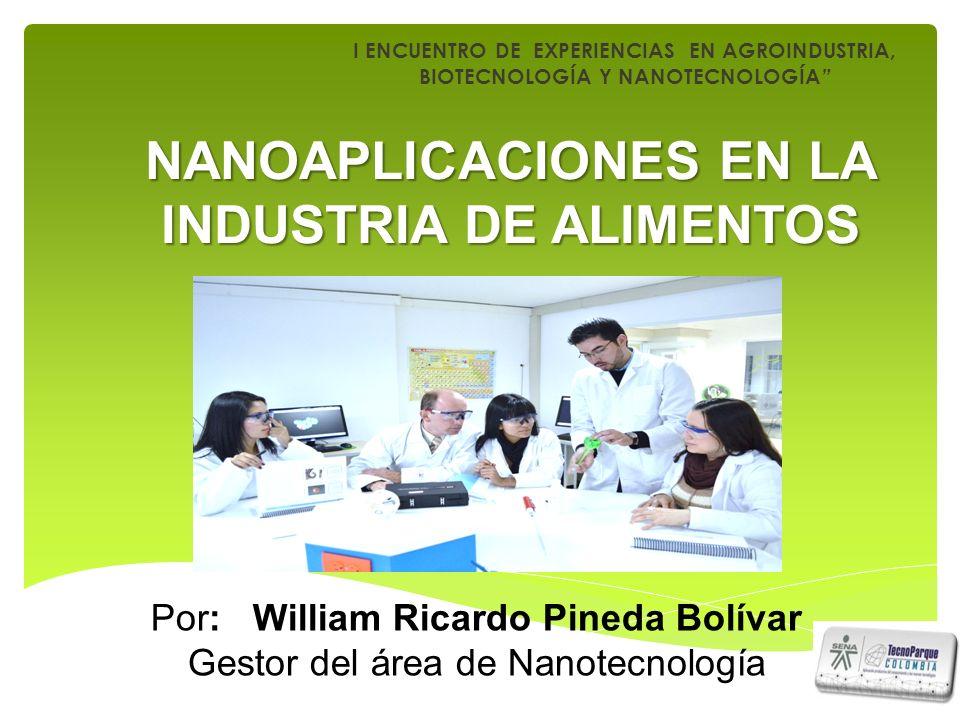 I ENCUENTRO DE EXPERIENCIAS EN AGROINDUSTRIA, BIOTECNOLOGÍA Y NANOTECNOLOGÍA NANOAPLICACIONES EN LA INDUSTRIA DE ALIMENTOS Por: William Ricardo Pineda