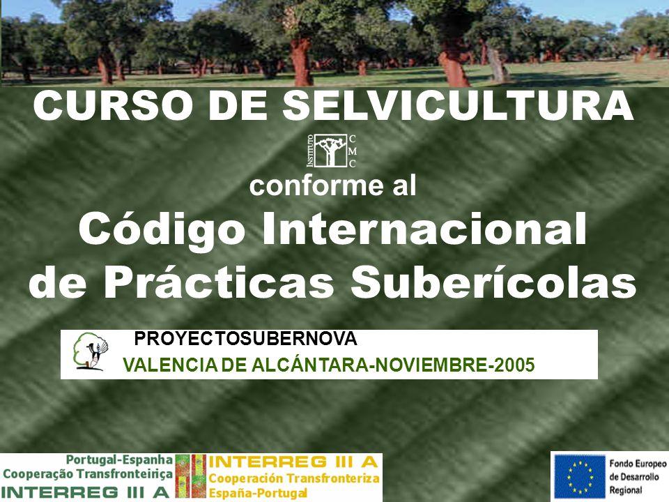 CURSO DE SELVICULTURA conforme al Código Internacional de Prácticas Suberícolas PROYECTOSUBERNOVA VALENCIA DE ALCÁNTARA-NOVIEMBRE-2005