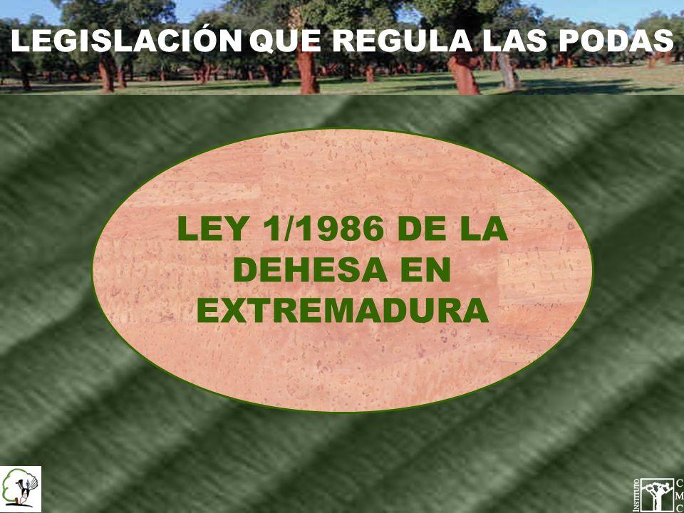 LEGISLACIÓN QUE REGULA LAS PODAS LEY 1/1986 DE LA DEHESA EN EXTREMADURA