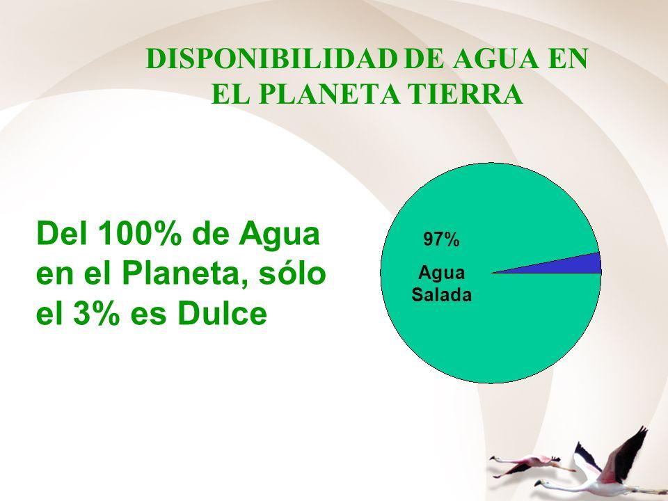 DISPONIBILIDAD DE AGUA EN EL PLANETA TIERRA 97% Agua Salada Del 100% de Agua en el Planeta, sólo el 3% es Dulce