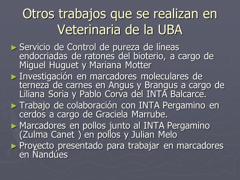 Otros trabajos que se realizan en Veterinaria de la UBA Servicio de Control de pureza de líneas endocriadas de ratones del bioterio, a cargo de Miguel