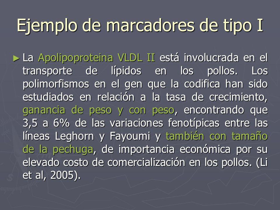 Ejemplo de marcadores de tipo I La Apolipoproteina VLDL II está involucrada en el transporte de lípidos en los pollos. Los polimorfismos en el gen que