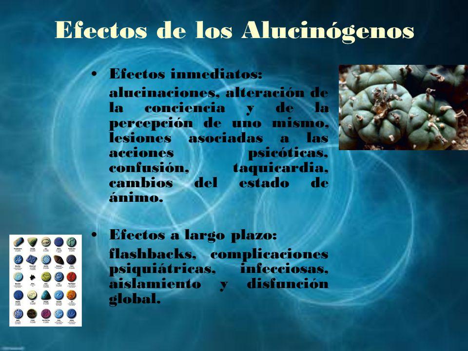 Efectos de los Alucinógenos Efectos inmediatos: alucinaciones, alteración de la conciencia y de la percepción de uno mismo, lesiones asociadas a las a