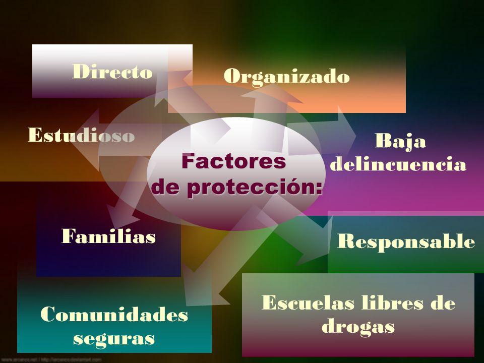 Baja delincuencia Directo Comunidades seguras Escuelas libres de drogas Familias Estudioso Organizado Responsable Factores de protección: