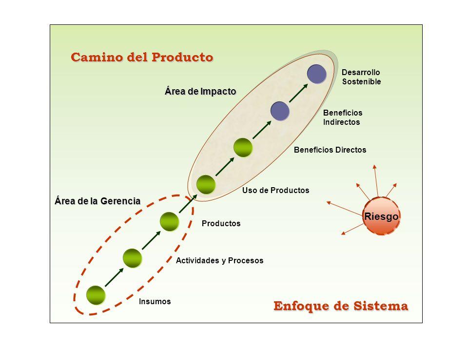 Riesgo Insumos Actividades y Procesos Productos Uso de Productos Beneficios Directos Beneficios Indirectos Desarrollo Sostenible Área de la Gerencia Á