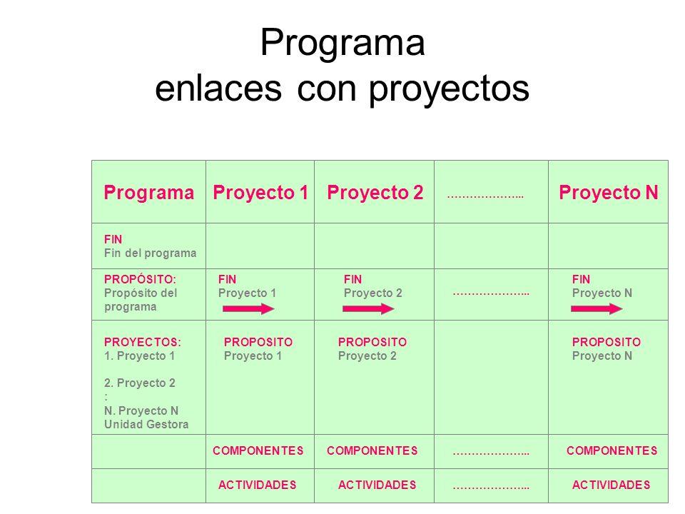 Programa enlaces con proyectos ProgramaProyecto 1Proyecto 2Proyecto N FIN Fin del programa PROPÓSITO: Propósito del programa PROYECTOS: 1. Proyecto 1