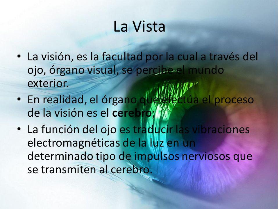 La Vista La visión, es la facultad por la cual a través del ojo, órgano visual, se percibe el mundo exterior. En realidad, el órgano que efectúa el pr