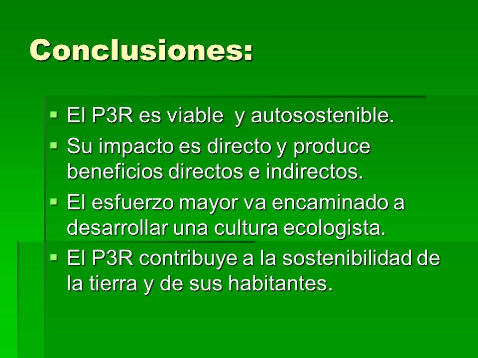 Conclusiones: El P3R es viable y autosostenible. El P3R es viable y autosostenible. Su impacto es directo y produce beneficios directos e indirectos.