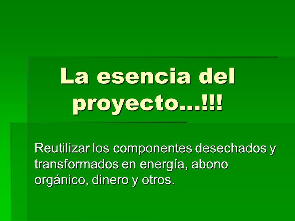 La esencia del proyecto…!!! Reutilizar los componentes desechados y transformados en energía, abono orgánico, dinero y otros.