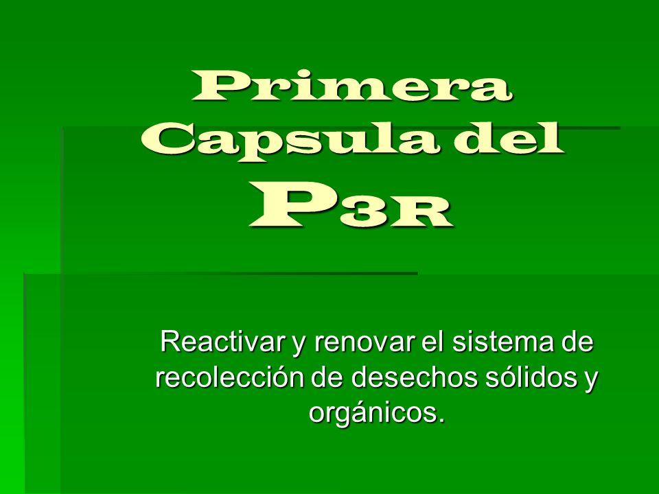 Primera Capsula del P 3R Reactivar y renovar el sistema de recolección de desechos sólidos y orgánicos.