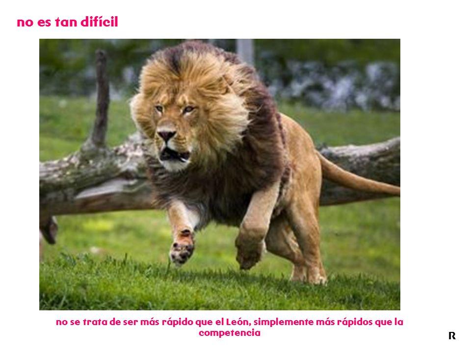 no es tan difícil R no se trata de ser más rápido que el León, simplemente más rápidos que la competencia