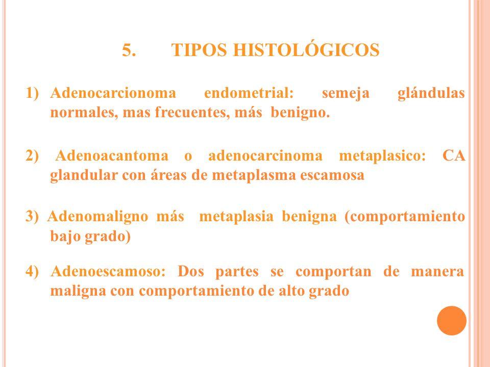 1)Adenocarcionoma endometrial: semeja glándulas normales, mas frecuentes, más benigno. 2) Adenoacantoma o adenocarcinoma metaplasico: CA glandular con