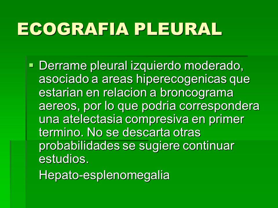 ECOGRAFIA PLEURAL Derrame pleural izquierdo moderado, asociado a areas hiperecogenicas que estarian en relacion a broncograma aereos, por lo que podri
